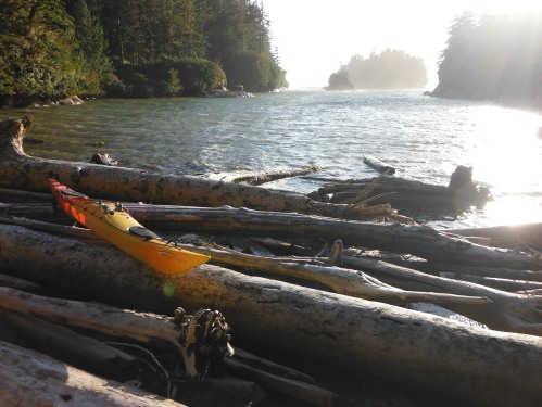 Kayak on the driftwood.