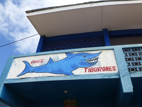Go Sharks