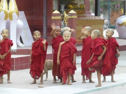 Mini monks