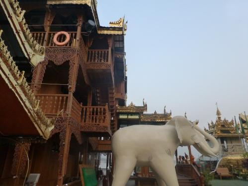On board Elephant